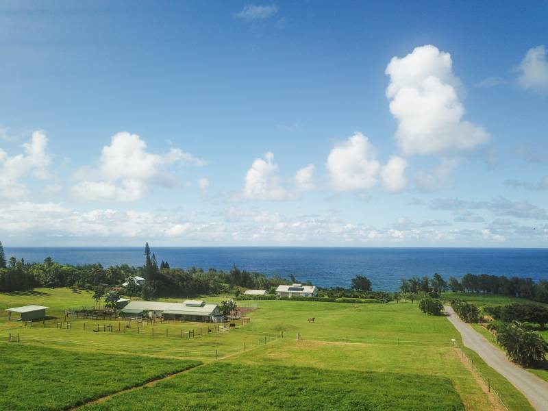 Equestrian Estate for sale Kohala