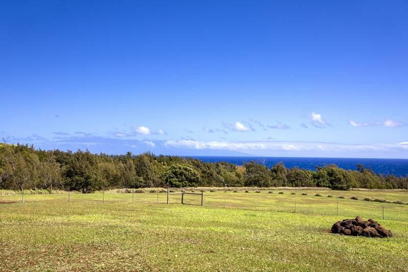Ocean view horse property near Hawi