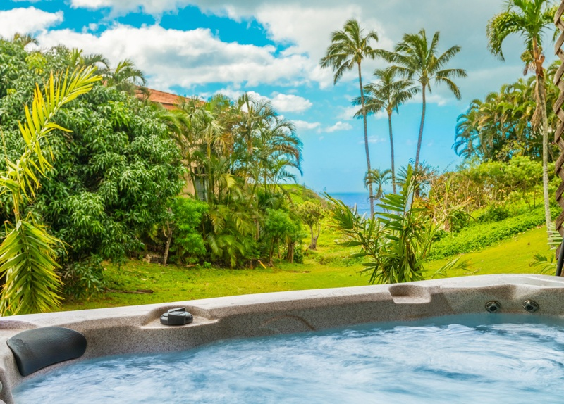 Looking over the hot tub to the ocean in the distance.