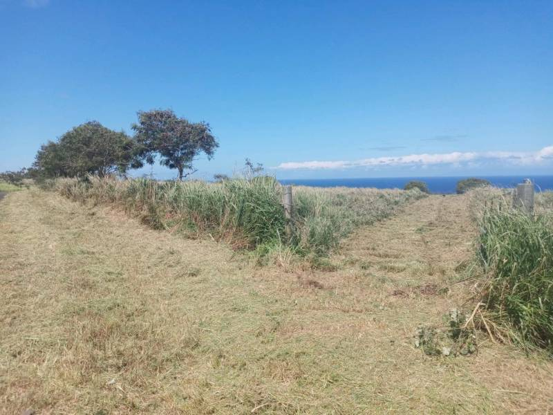 42 acre parcel for sale Hawi Hawaii