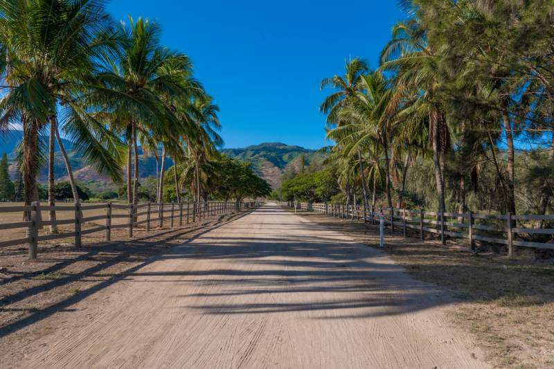 Welcome to Dillingham Ranch oahu