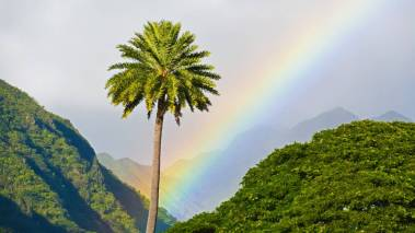 rainbow in front of mountains on oahu