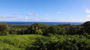 ocean view from 130 Kalo Rd hana maui