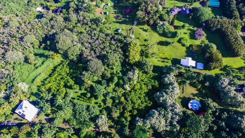 aerial view 130 Kalo Rd hana maui