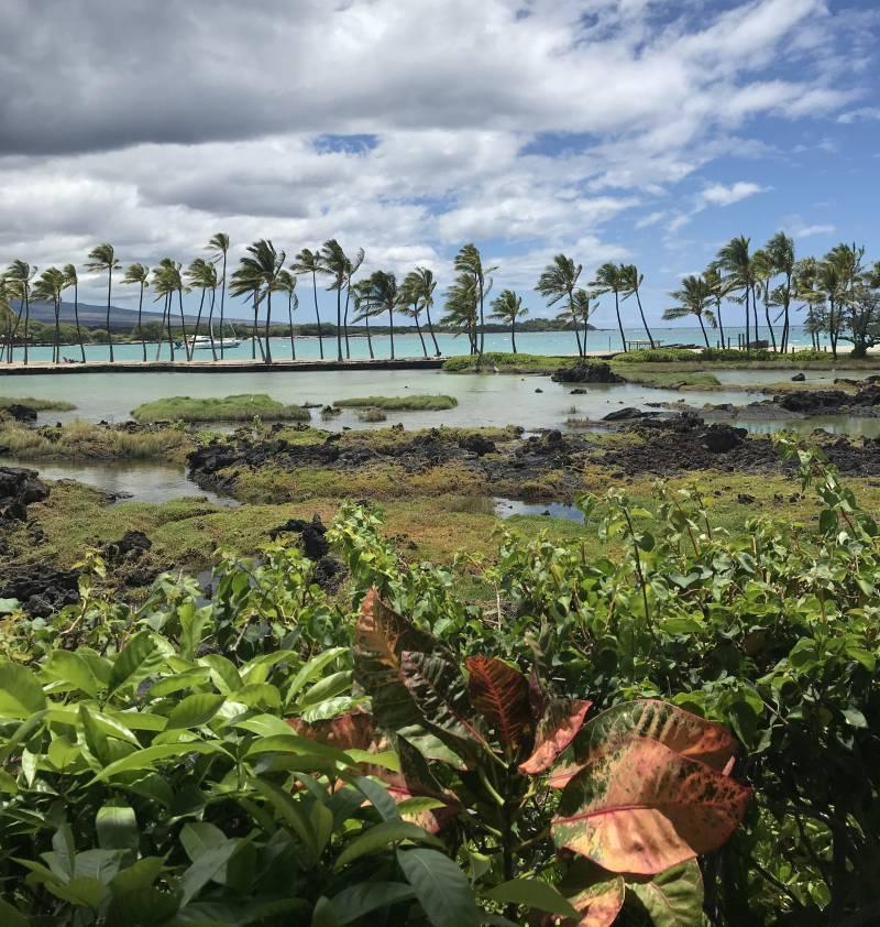views from Kōlea Kai big island
