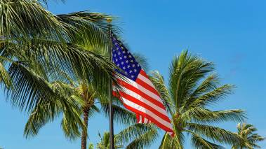 american flag flying in the palm trees
