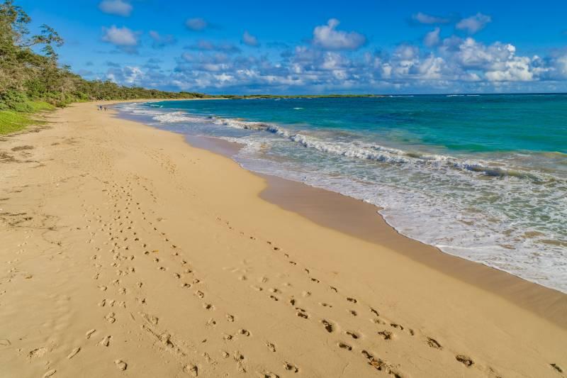 north shore oahu beach Malaekahana