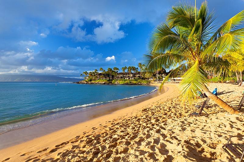 golden hour on maui beach