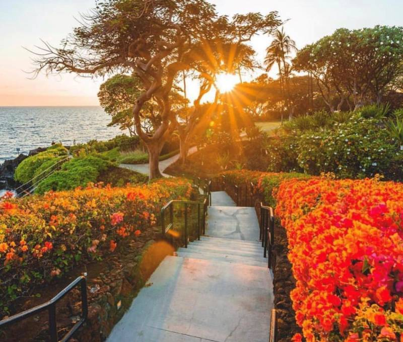 flower lined path to ocean at mauna kea resort