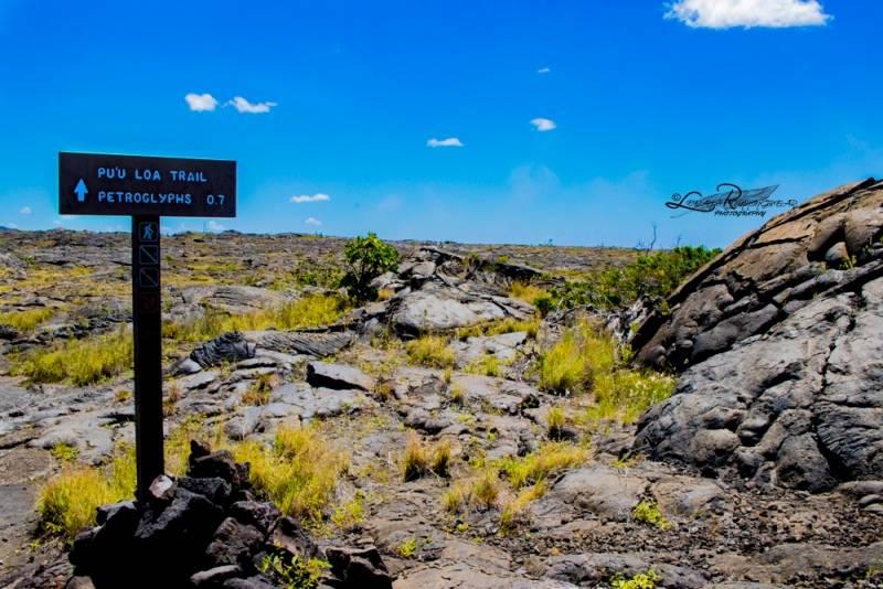 hiking trail on the big island