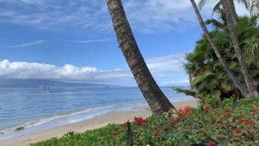 beach in west maui