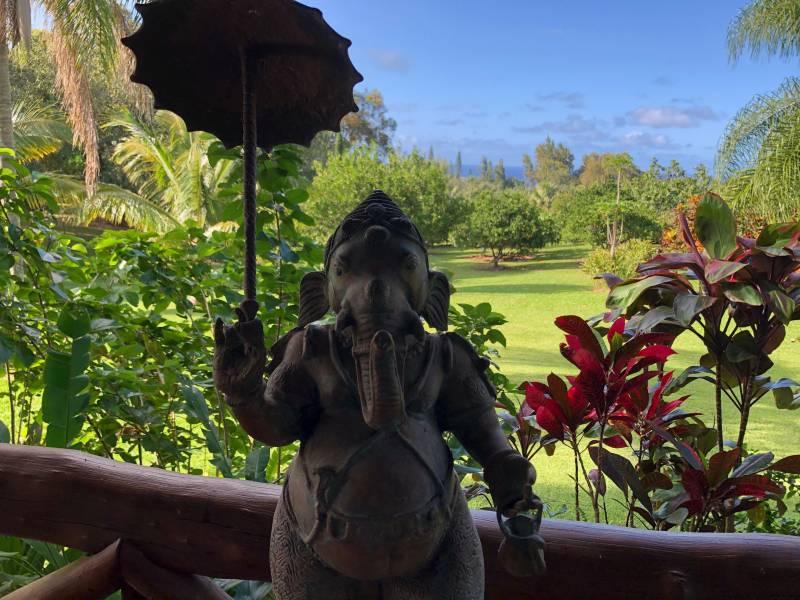 Starseed Ranch sold on big Island hawaii