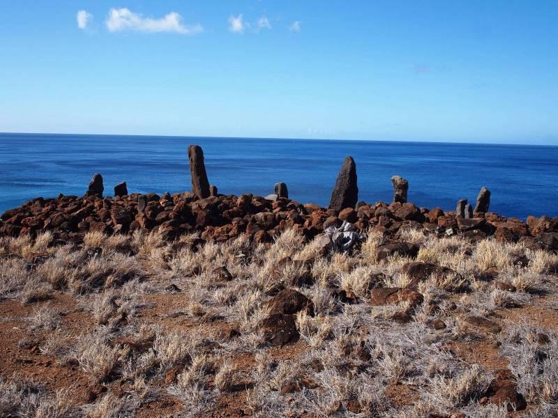 Ko'a Holomoana on big island