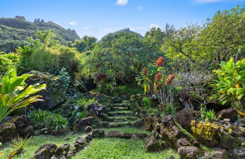 lush green backyard on kauai