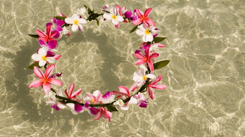colorful Hawaiian flower lei floating in water