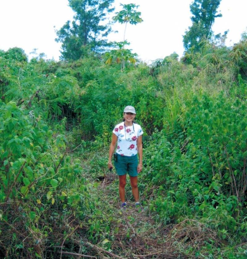 buying land on the big island hawaii