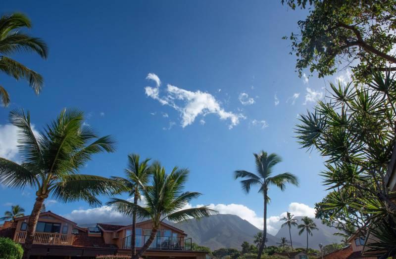 mountain view on maui