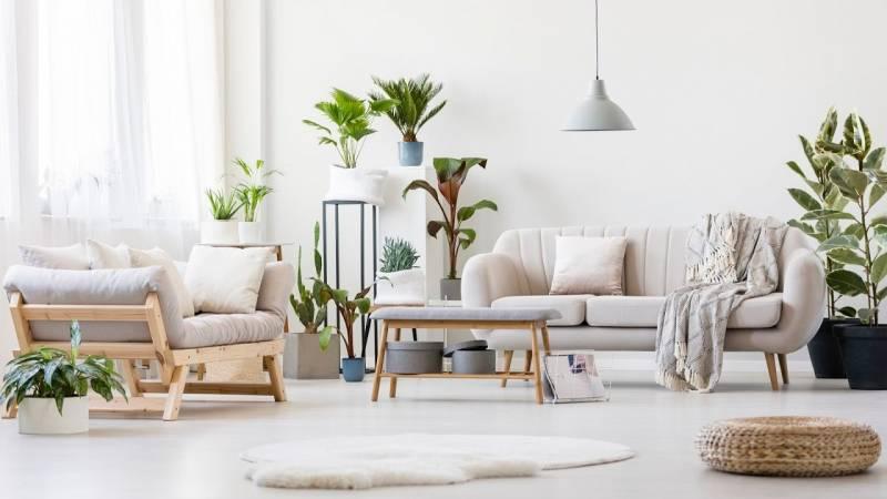 bright living room on oahu