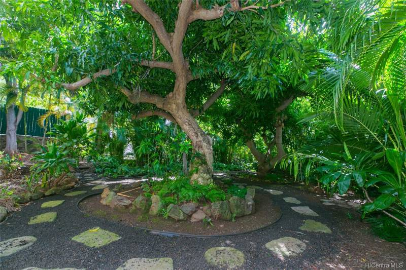 trees in courtyard
