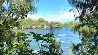 gorgrous big island retreat for sale