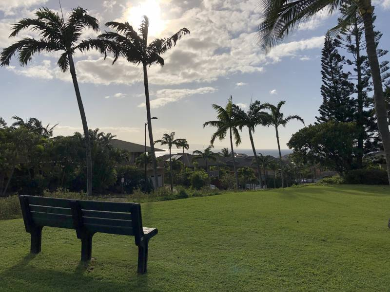 View from dog park in Kahana Ridge