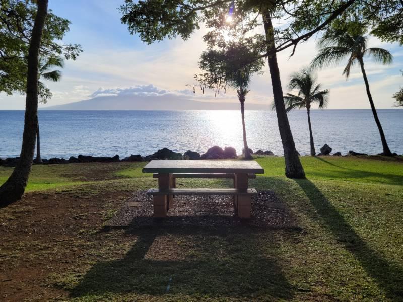 Wahikuli Wayside Park picnic table