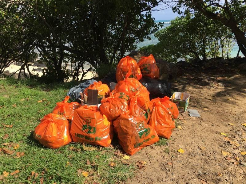 hawaii life highway clean up