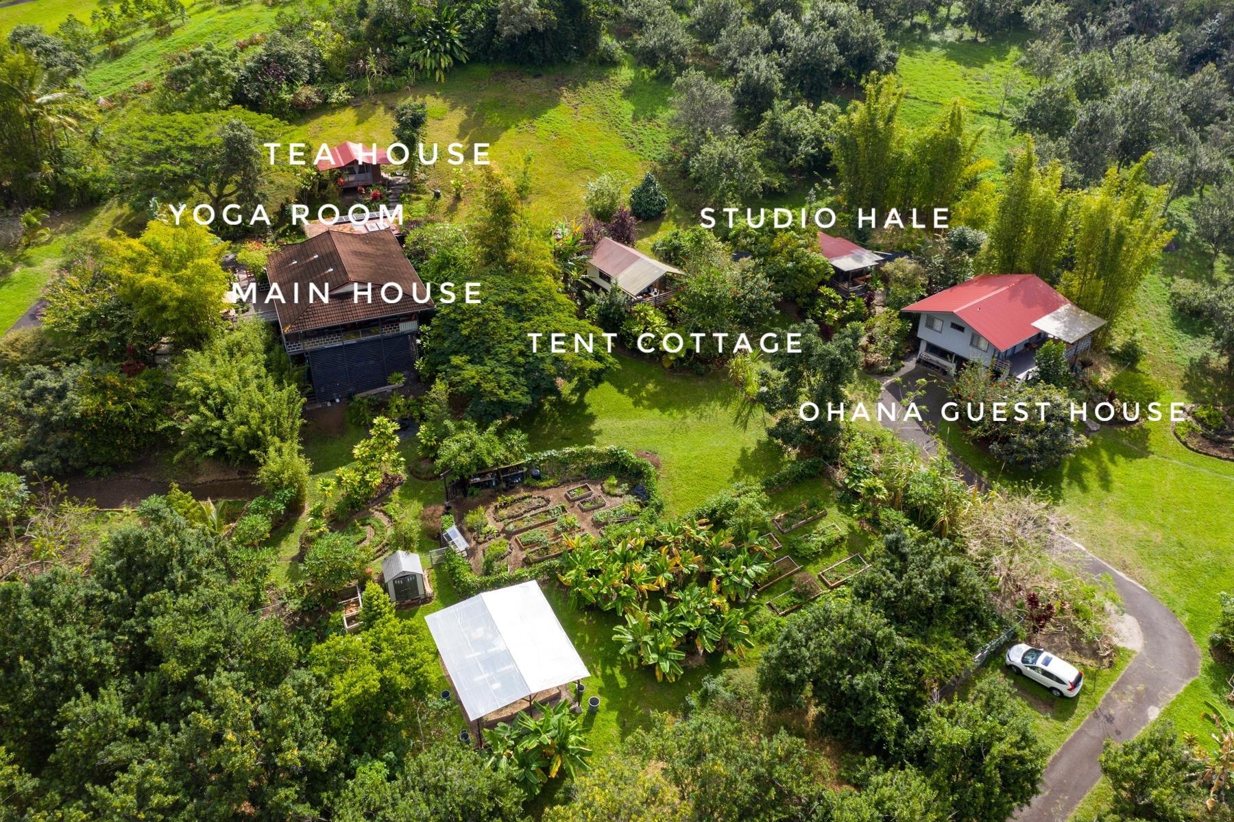 Overview of the Honaunau Wellness farm