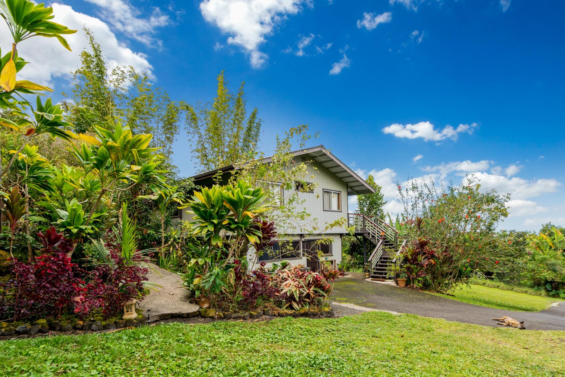 The ohana guest house