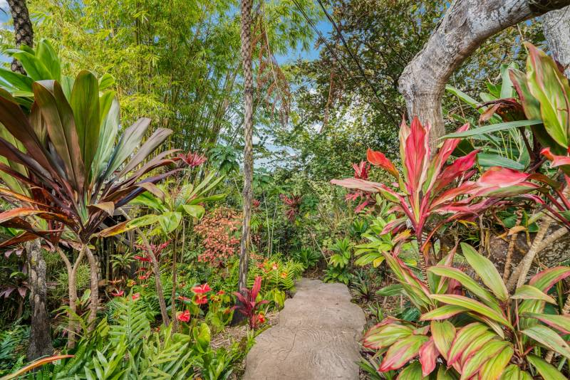 Lush pathways lead to the multiple dwellings