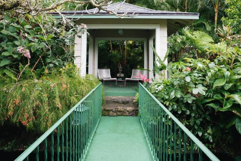 established tropical landscaping