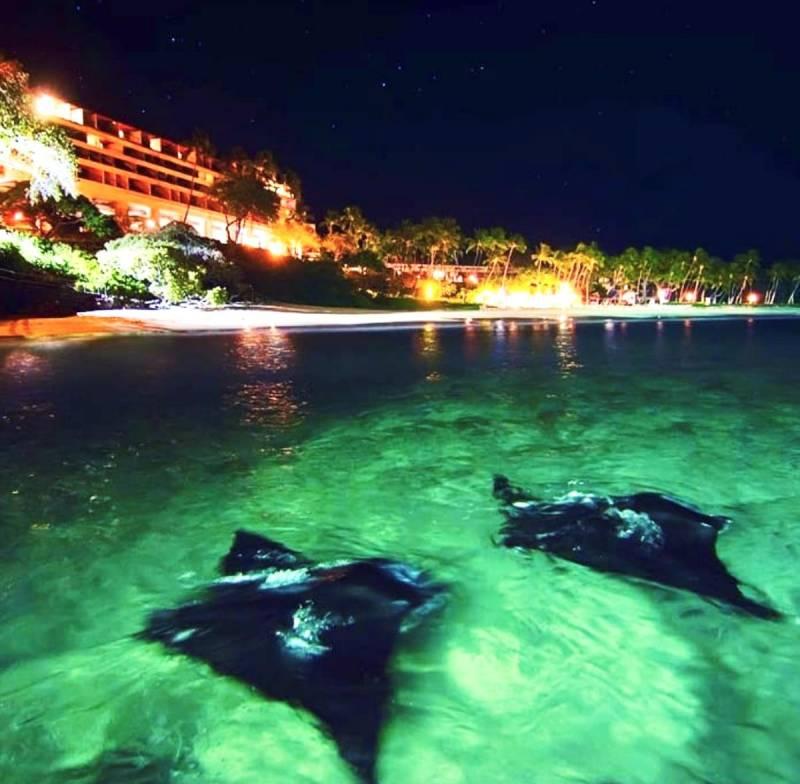 mauna kea resort at night