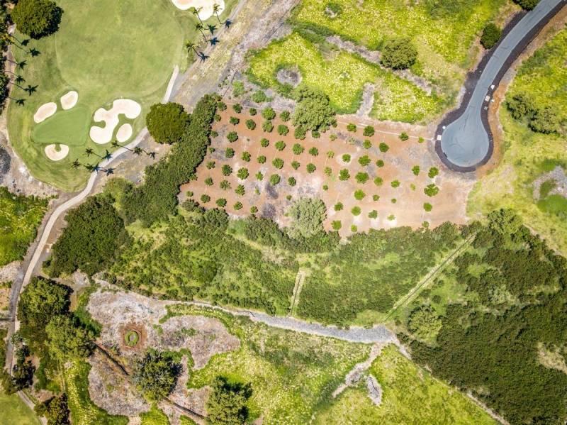 aerial view of big island luxury community hokulia