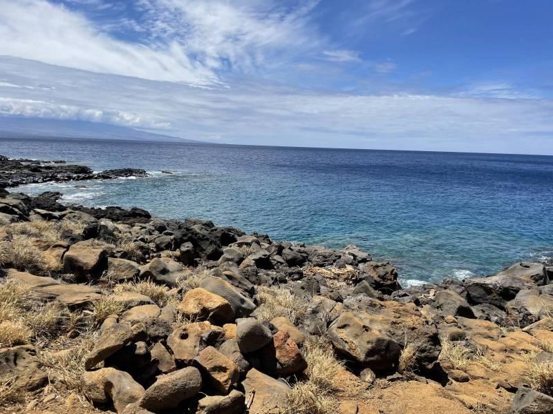 Leeward North Kohala Shoreline