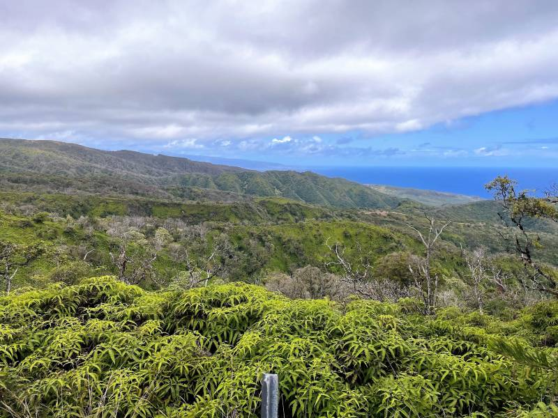 view of molokai from Maluhia Country Ranches