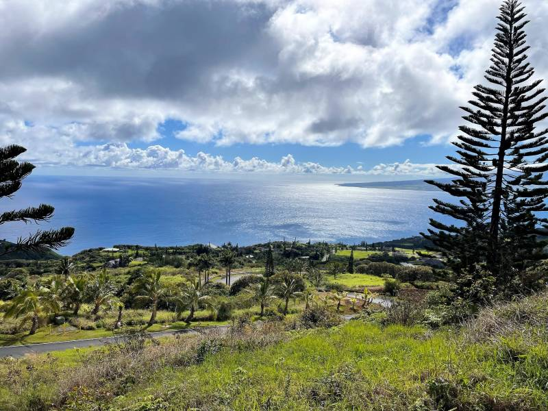 ocean views in Maluhia