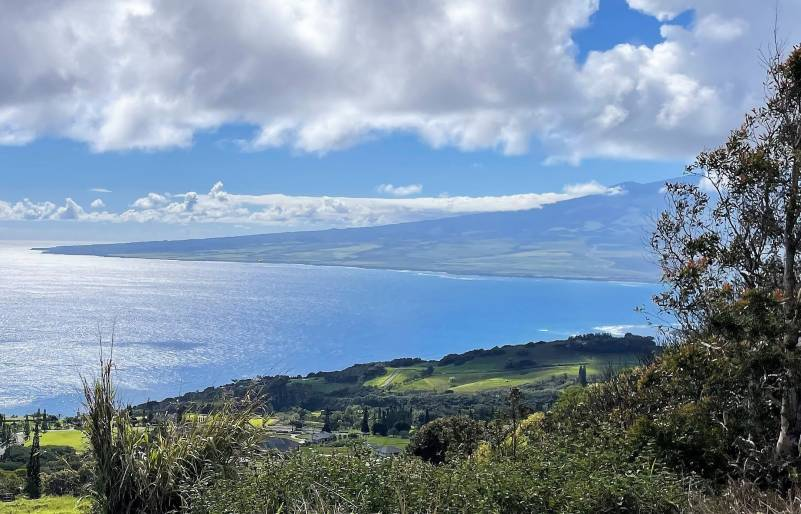 ocean views from maui real estate for sale
