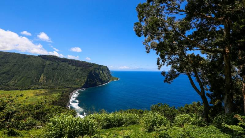 beautiful coastline views on hawaii's big island