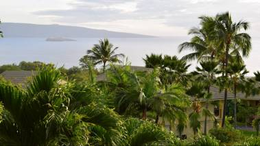 real estate on maui