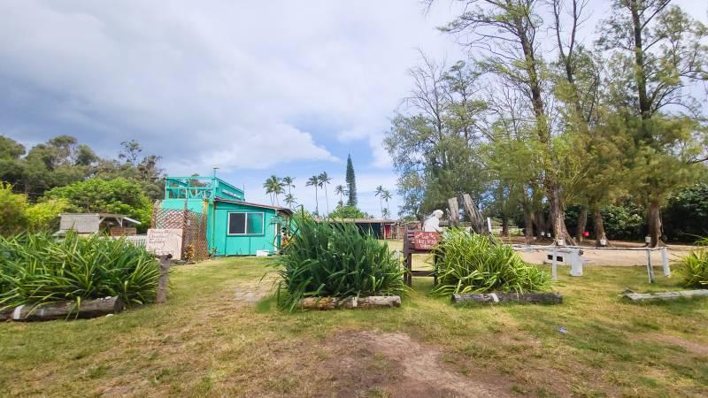 Waialua on the north shore of oahu