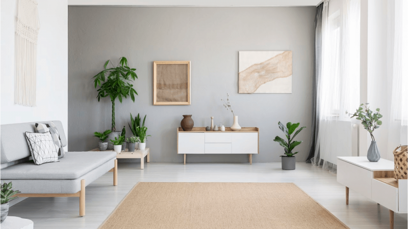 gray room and green plants