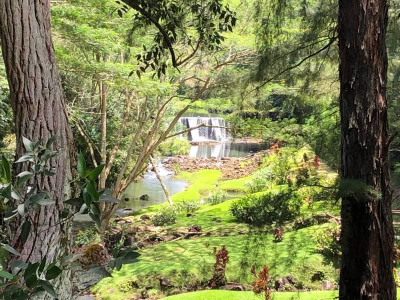 Stone Dam Wai Koa Plantation