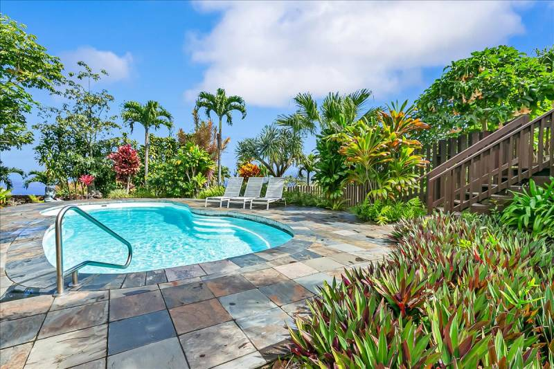 lovely pool surrounded by tropical plants