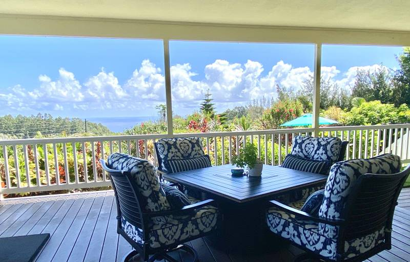 ocean view from hamakua big island real estate