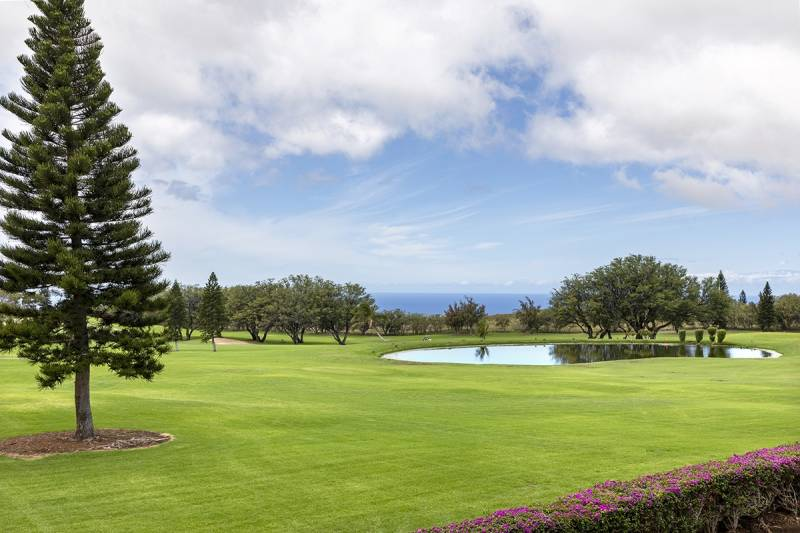 Golf Course and ocean view from Waikoloa Fairways A210
