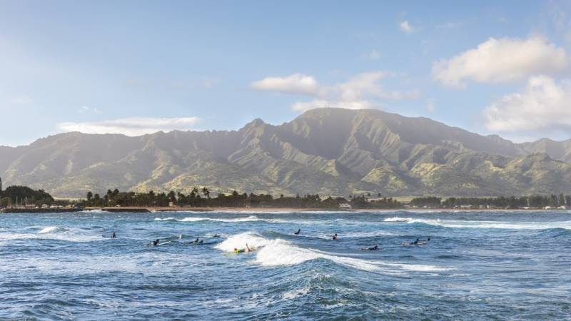 surfing the waves on oahu