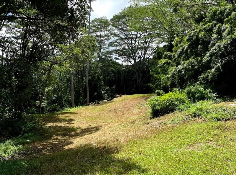 land for sale in hanalei