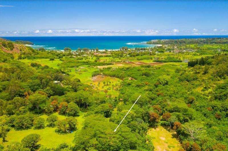 land for sale kauai
