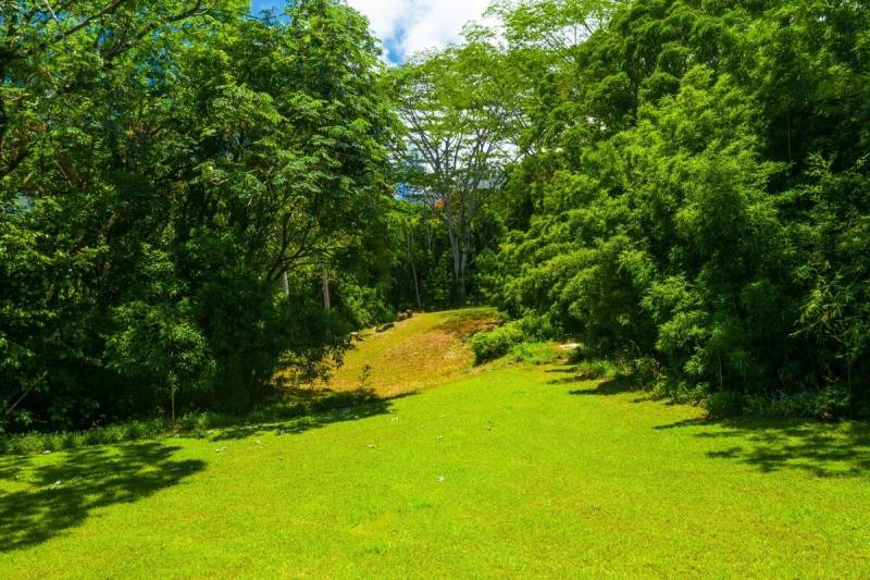 land for sale in hawaii