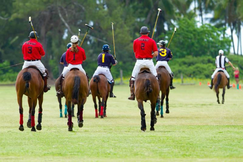 Polo at the Dilingham ranch on the north shore of Oahu.